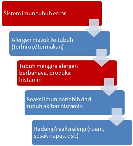 diagram sederhana proses terjadinya alergi