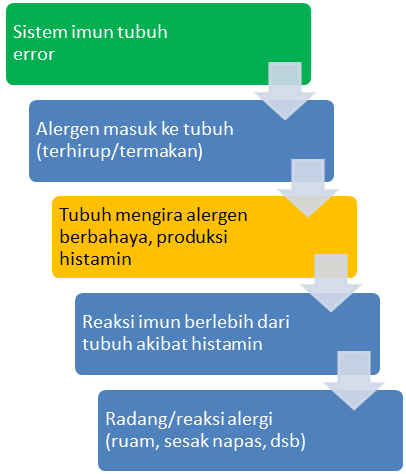 diagram proses terjadinya alergi